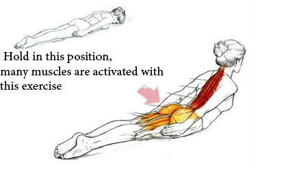 Excercise For Proper Body Posture