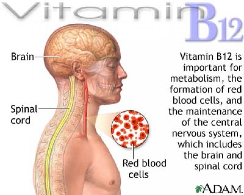 Vitamin B12 Deficiency: These Are The Symptoms, and Here ... B12 Deficiency Symptoms