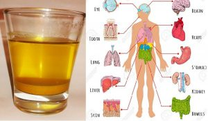 drink-1-cup-of-turmeric-water-in-the-morning-and-these-things-will-happen-to-your-body