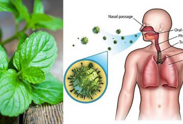 9-herbs-boost-immune-system-repair-lung-damage1