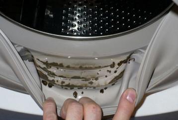 clean-mildew-washing-machine-using-two-ingredients