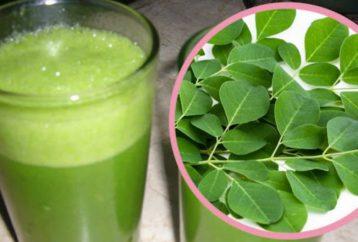 happens-body-drink-moringa-everyday