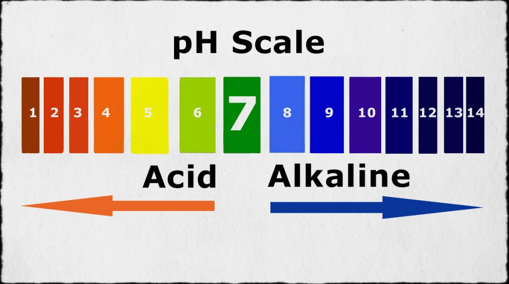 Balance Your pH With This Great List of Alkaline & Acidic Foods - Health And Healthy Living