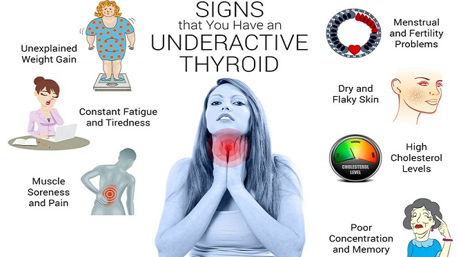 Your Thyroid Controls Your Entire Body! Here is How to ...