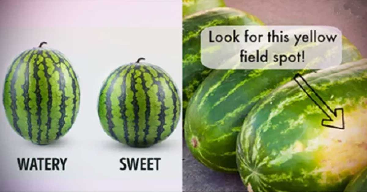 How to Choose The Sweetest Watermelon- 5 Tips - Health And ...