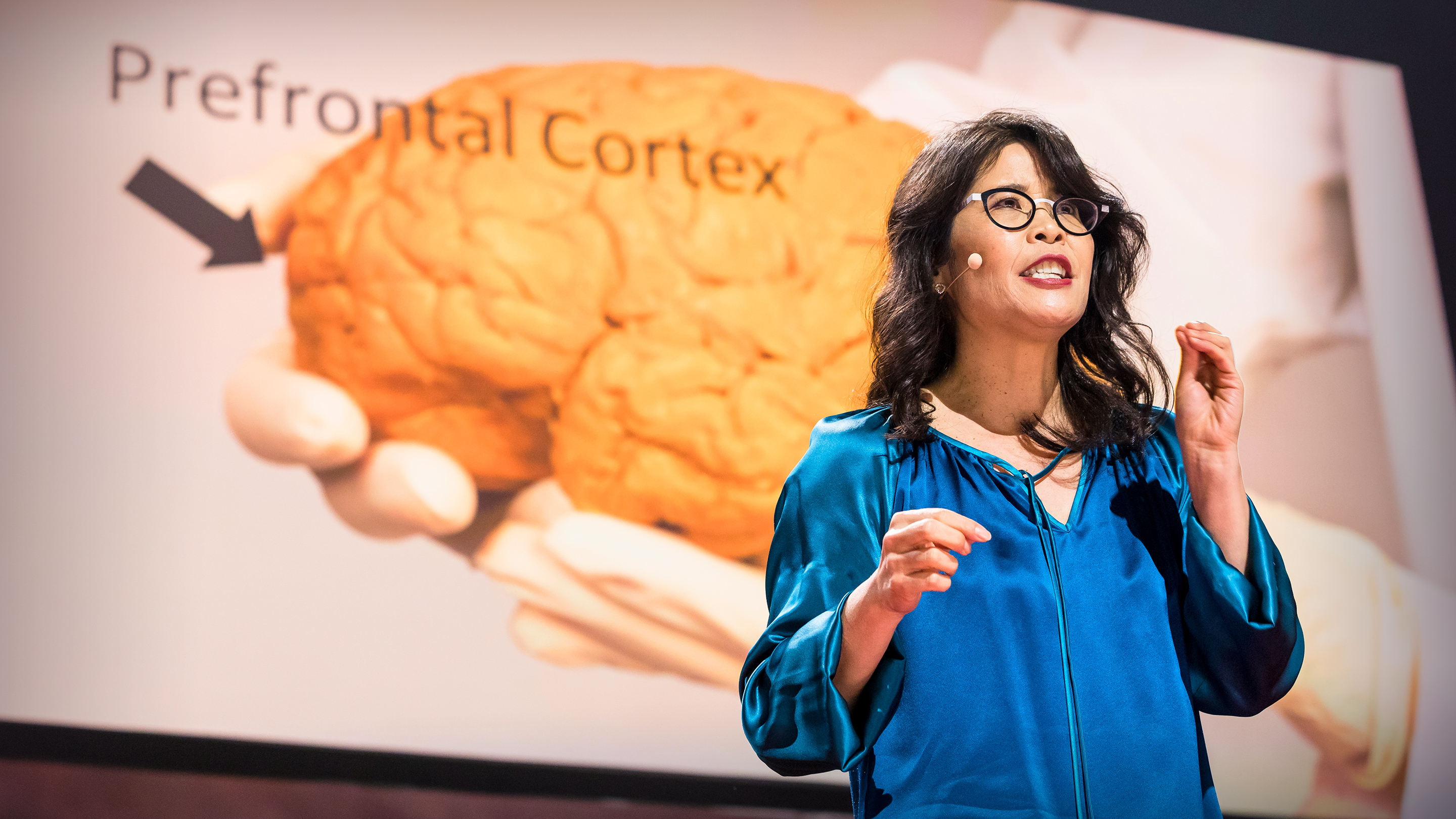 Exercise Makes Kids Brains More >> Wendy Suzuki The Brain Changing Benefits Of Exercise Ted Talk
